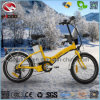Electric Folding Ebike En15194 Mini Scooter for Child