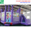 Inflatable Castle with Slide Combo, High Quality Inflatable Games