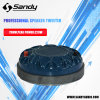 Sandy Concert Audio Speaker Woofer T75