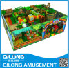 High Quality Indoor Playground Toy (QL-150605B)