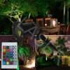 Red&Blue Static IP65 Garden Laser Light for Park/Watesurface/Christmas Tree