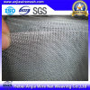 Galvanized Iron Wire Mosquito Net for Window and Doors