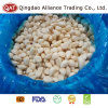 Salted Peeled Garlic with Best Price