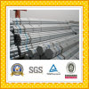Galvanized Steel Tube/Pipe