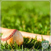 Baseball Court Natural Looking Artificial Synthetic Grass