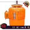 Zdy1/Trolley Motor/0.2kw Intuction Electric Motor