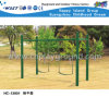 Kids Outdoor Swing Play Structures Backyard Playground (HC-13801)