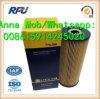 E197HD23 Oil Filter for Hengst Mercedes Benz Mann (E197HD23)
