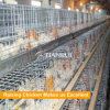 H Frame Q235 Galvanized Steel Automatic Battery Cage for Rearing Pullets