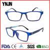 Well-Designed China Custom Logo Blue Eyeglasses Frame (YJ-G52252)