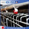 Poultry Equipment Chicken Cage Bird Cage Agricultural Equipment Fowl/Quail Cage for Sale