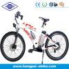 En15194 Approved Mountain Electric Bike (HP-E009)