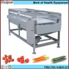 Commercial Vegetables Brush Cleaning Machine