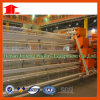 Jinfeng Poultry Farm Cage Turnkey Project