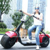 Big Wheel Electric Moped Scooter Harley with Lithium Battery