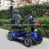 Factory Price Scooter Electric with Ce Certificate