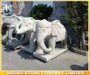 Stone Bangkok Elephant Statue