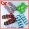 Beautiful Clorful Ladies Flip Flop Lovely Slipper for Women