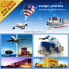 Container Cargo Ship From China to USA
