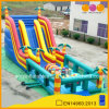 Hot Sale Tropical Theme Obstacle Course (aq1486)