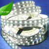 Single Color Double Row 120LED/M SMD 5050 LED Strip