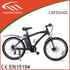 Tag/PAS Frame Portable Battery Electric Bicycle with Ce/En15194