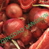 Fresh Red Onion 5-7cm Packed in Mesh Bag