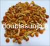 Nameko Mushroom in Brine in Drum Packing