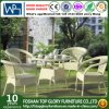 PE Rattan Furniture Outdoor Wicker Furniture Dining Set (TG-578)