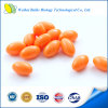 GMP Certified Red Antarctic Krill Oil Softgel