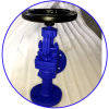 Casting Steel Angle Globe Valve 90d