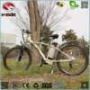 China Cheap 250W Electric Mountain Bike LCD Display Sport MTB Bicycle