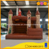 Beautiful Playground Jumping Inflatable Castle Combo for Kids (AQ738-2)