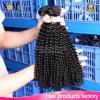 Bohemian Hair Bundles Kinky Curly /Virgin Bohemian Har Weave