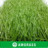 Professional Soccer / Football Field Synthetic Grass (AST-60D)