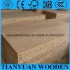 Cheap 18mm Poplar / Pine / Paulownia / Falcata Core Blockboard