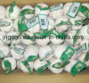 New Crop Carton Packing White Chinese Garlic