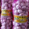 7kg Mesh Bag Packing Fresh Red Normal White Garlic