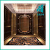 Sum Passenger Elevator with Good Quality Hot Sail