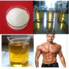 High Quaity Raw Material Yohimbine HCl Extract CAS No: 65-19-0
