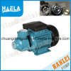 Pm Series Electric Peripheral Water Pump Pentax Pump