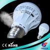 Brightness Global LED Bulb A60 9W