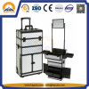 Fashionable Large Trolley Aluminum Case with Mirror (HB-3350)