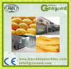 Dried Sliced Mango Production Plant