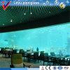 Unique Modern Plexiglass Acrylic Aquarium
