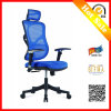 Ergonomic Healthy Ergo Villa Fabric Chair