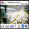 Broiler Ground Keeping Equipment with Ce Certificate