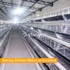 Tianrui A Type Automatic layer Poultry Farm Cage Design