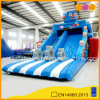Inflatable Bouncer inflatable Robert Water Slide for Sale (aq0129)
