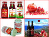 Pomegranate Juice Production Line Aseptic Filling in Glass Bottle/Can/Carton